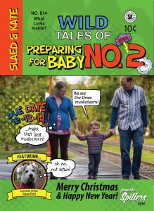 Wild Tales of...Preparing for Baby Number 2--2014