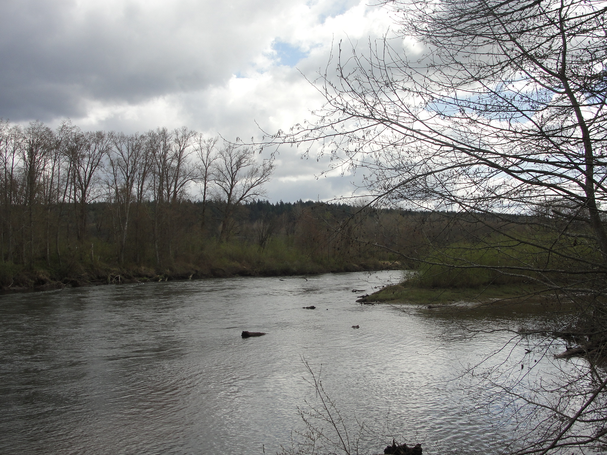 The Nisqually River