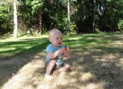 Seward Park Tales and Trails