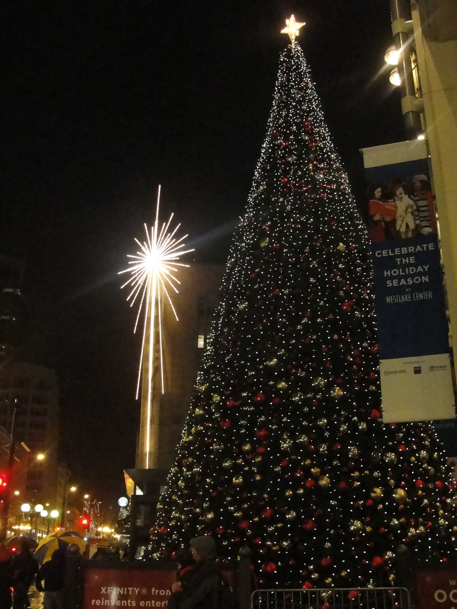 Brooklyn Christmas Tree Disposal - johnmilisenda.com