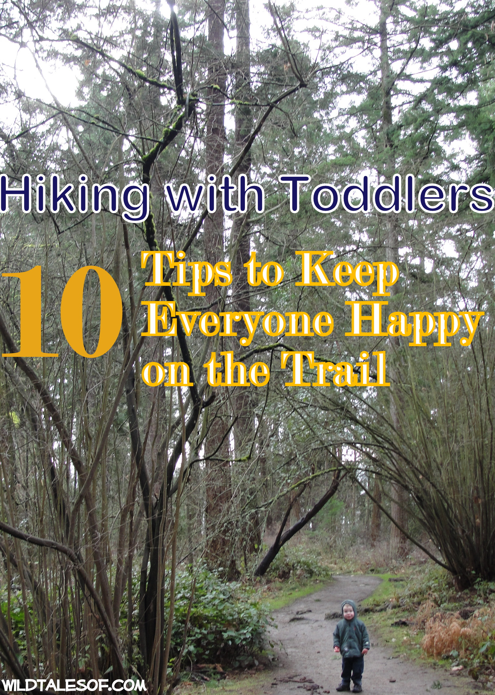 e4f0e3940b1 Hiking with Toddlers  10 Tips to Keep Everyone Happy on the Trail ...