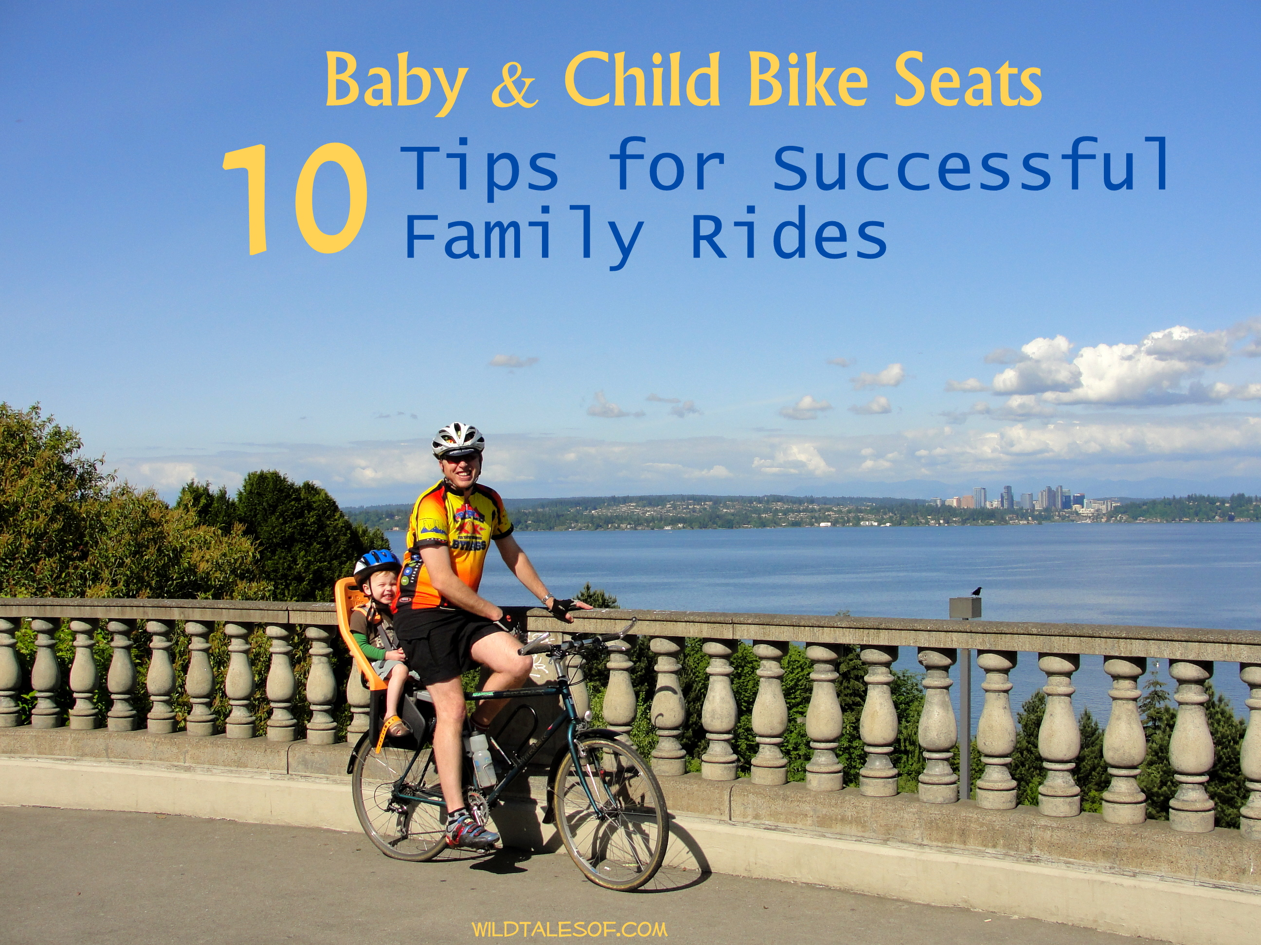 Baby and Child Bike Seats: 10 Tips for Successful Family ...