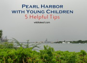Visiting Pearl Harbor with Young Children: 5 Helpful Tips | WildTalesof.com