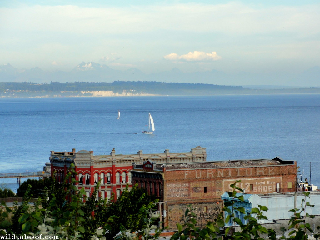 Port Townsend, WA--A Washington State Destination for Families | WildTalesof.com