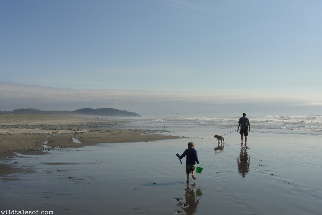Long Beach, WA--A Washington State Destination for Families | WildTalesof.com