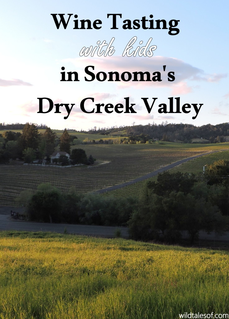 Wine Tasting with Kids in Sonoma's Dry Creek Valley | WildTalesof.com