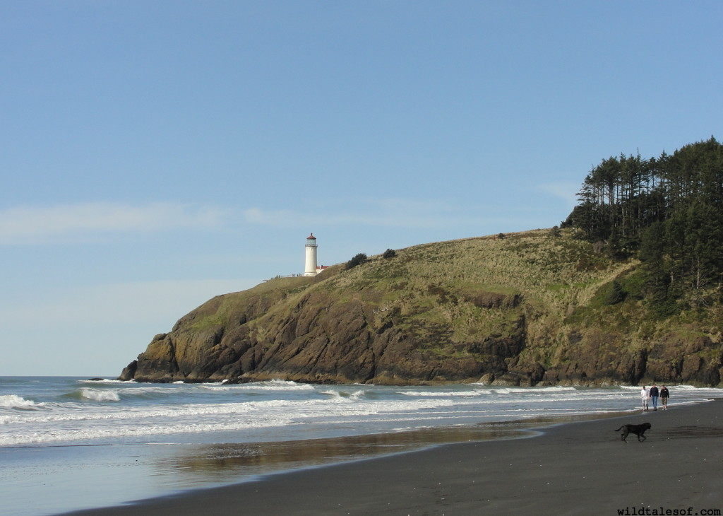 Cape Disappointment State Park | WildTalesof.com