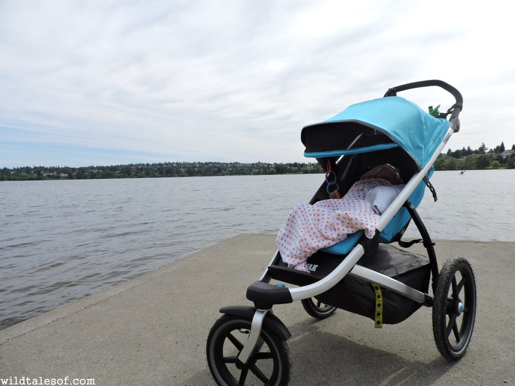 Thule Urban Glide Stroller Review | WildTalesof.com