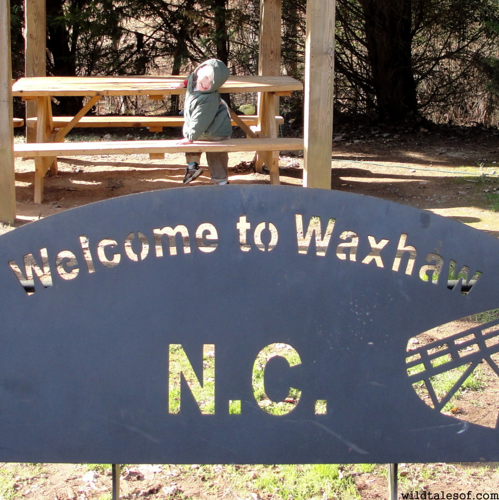 Southeast USA Travel: Waxhaw, NC with Kids | WildTalesof.com