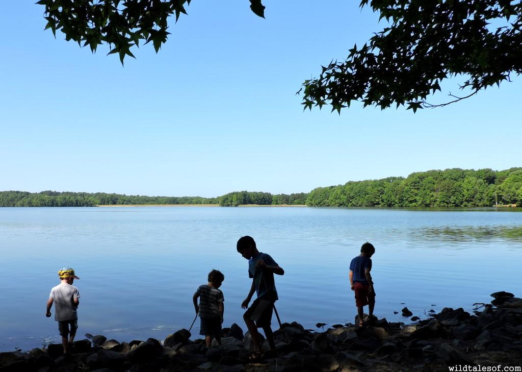 Southeast USA Travel: Waxhaw, NC with Kids   WildTalesof.com