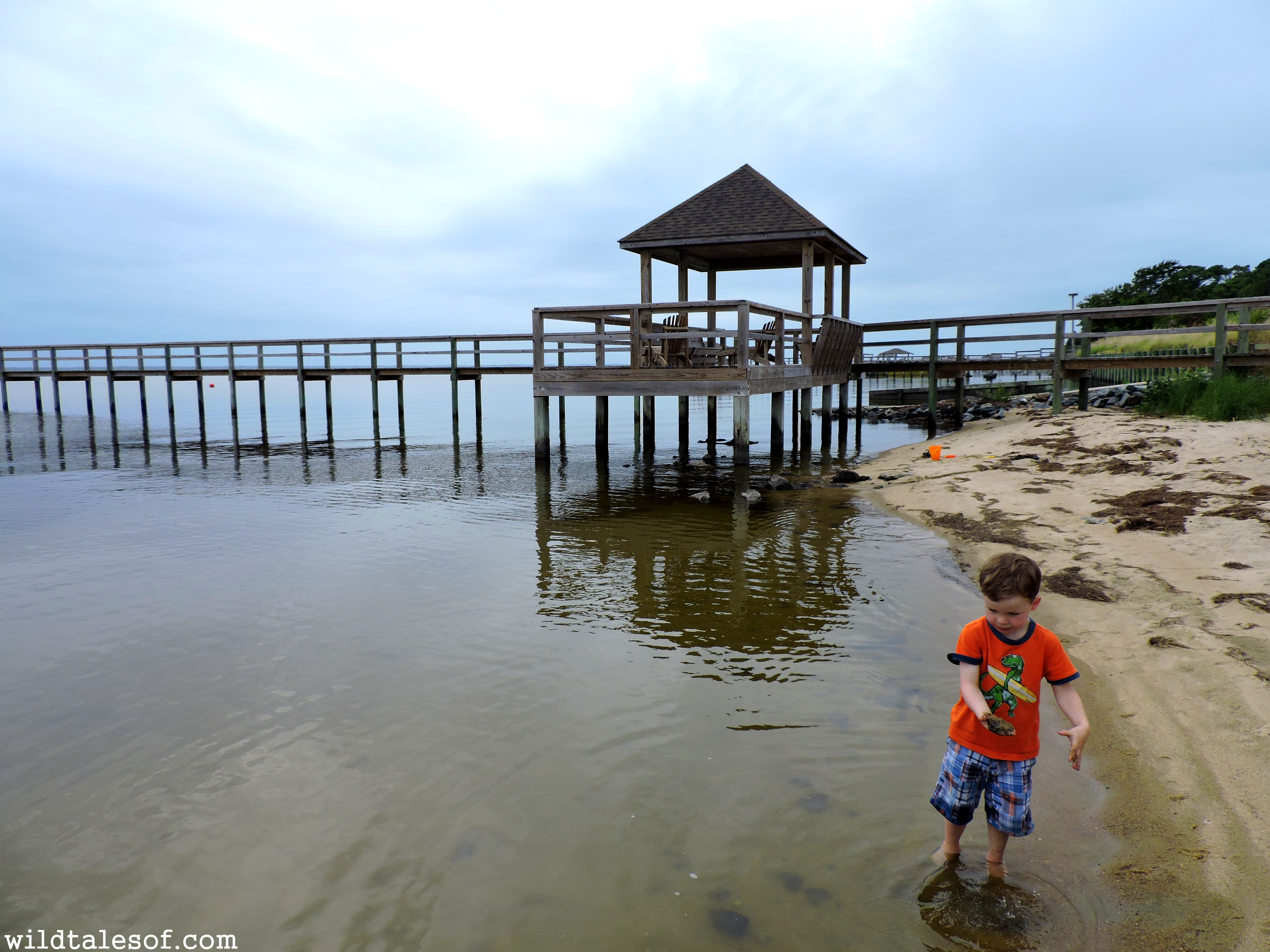 outer banks north carolina essay The tourists flocking to north carolina's outer banks right now know that the joys  of summer there—the gorgeous beaches, the wild horses, the.