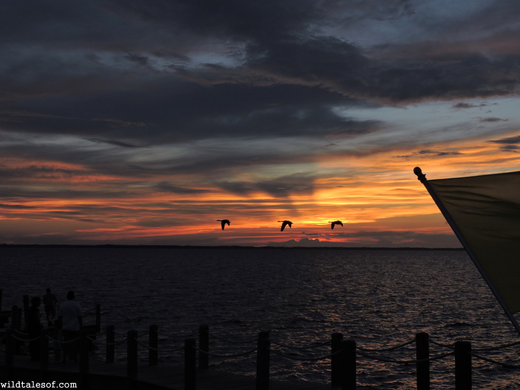 Sunset on the Currituck Sound--Duck, NC| WildTalesof.com