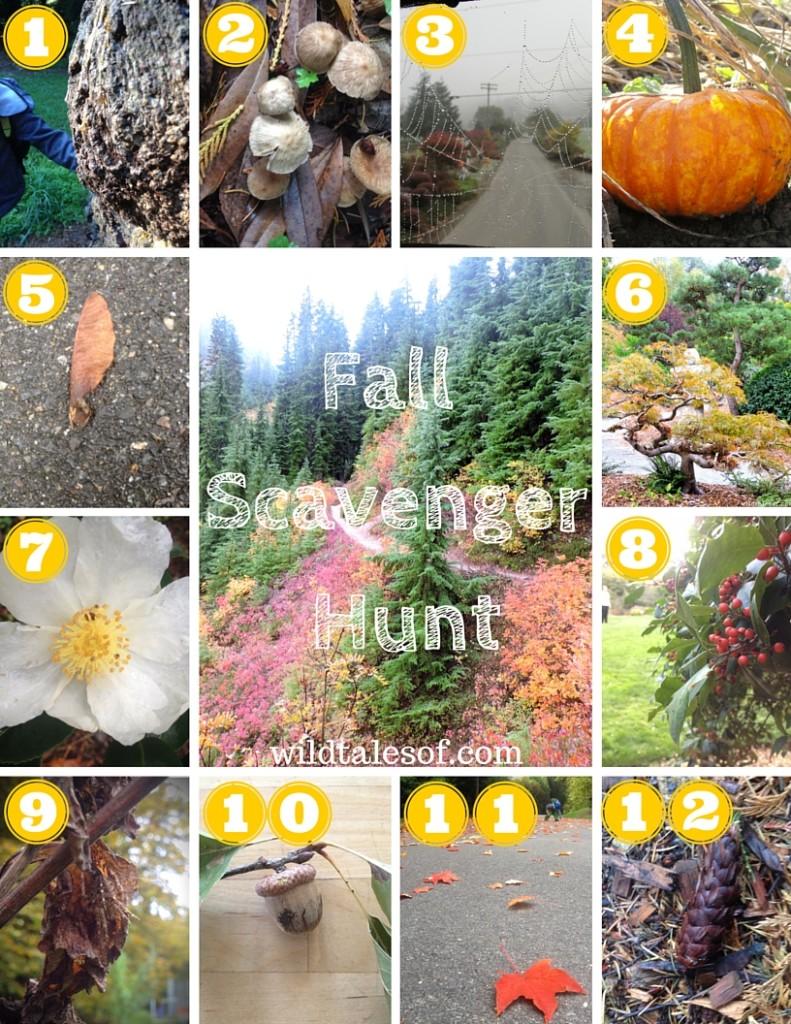Fall Scavenger Hunt for Kids Printable | WildTalesof.com