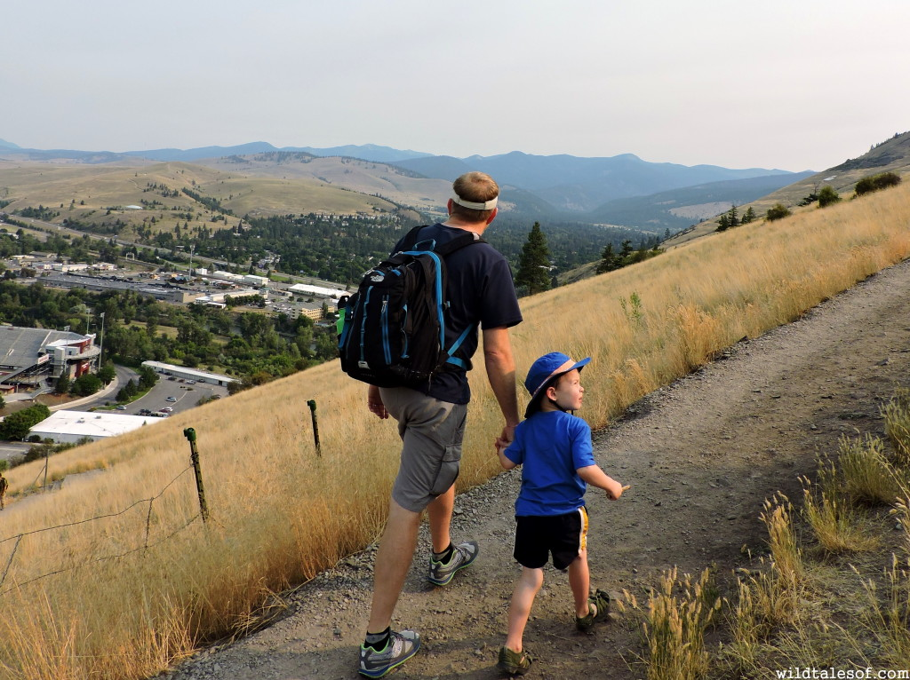 Hiking to the M--Missoula, Montana|WildTalesof.com