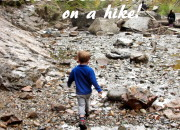 Things to do with your preschooler on a hike |WildTalesof.com