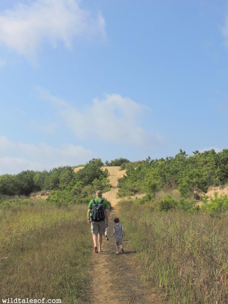 Visiting Jockey's Ridge State Park with Kids | WildTalesof.com