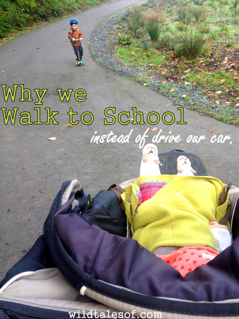 Why we walk to school instead of drive our car| WildTalesof.com