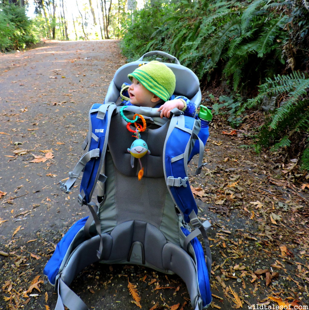 Thule Sapling Elite Review | WildTalesof.com