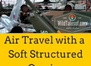 Air Travel with a Soft Structured Carrier | WildTalesof.com