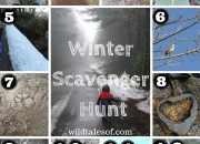 Winter Scavenger Hunt (with Printable) for Kids |WildTalesof.com