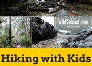 Hiking with Kids: Pacific Rim National Reserve Park's (Long Beach Unit) Schooner Beach Trail | WildTalesof.com