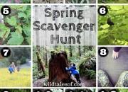 Spring Scavenger Hunt (with Printable) for Kids | WildTalesof.com
