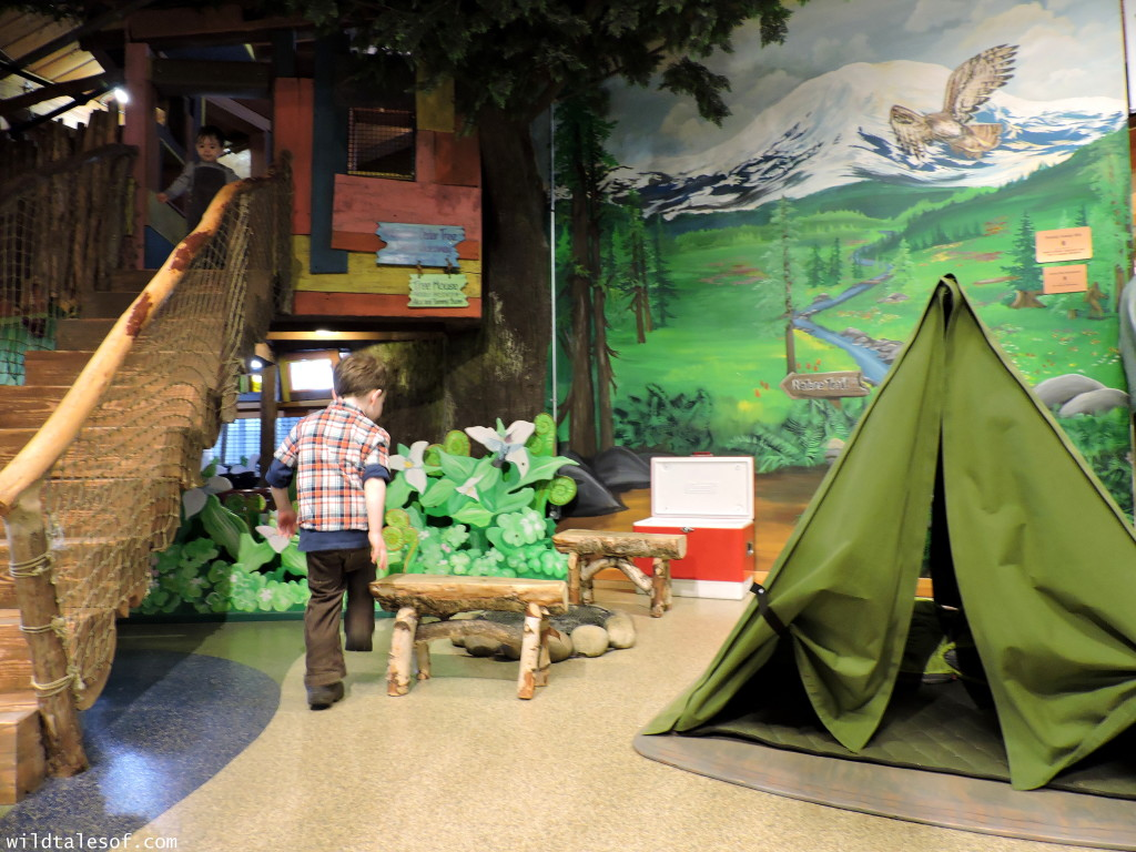Olympia, WA's Hands-on Children's Museum: 4 Things We Love +Visitor Tips | WildTalesof.com