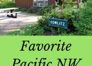 Ike Kinswa State Park in SW Washington State: Long Weekend Itinerary | WildTalesof.com