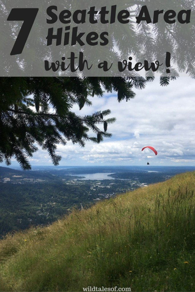Hiking with Kids: Seattle Area Hikes with a View   WildTalesof.com