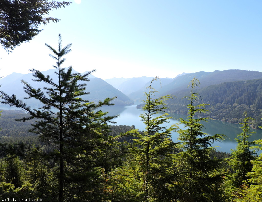 4 Ways to Enrich Your Next Hike featuring the Central Cascade's Spada Lake | WildTalesof.com