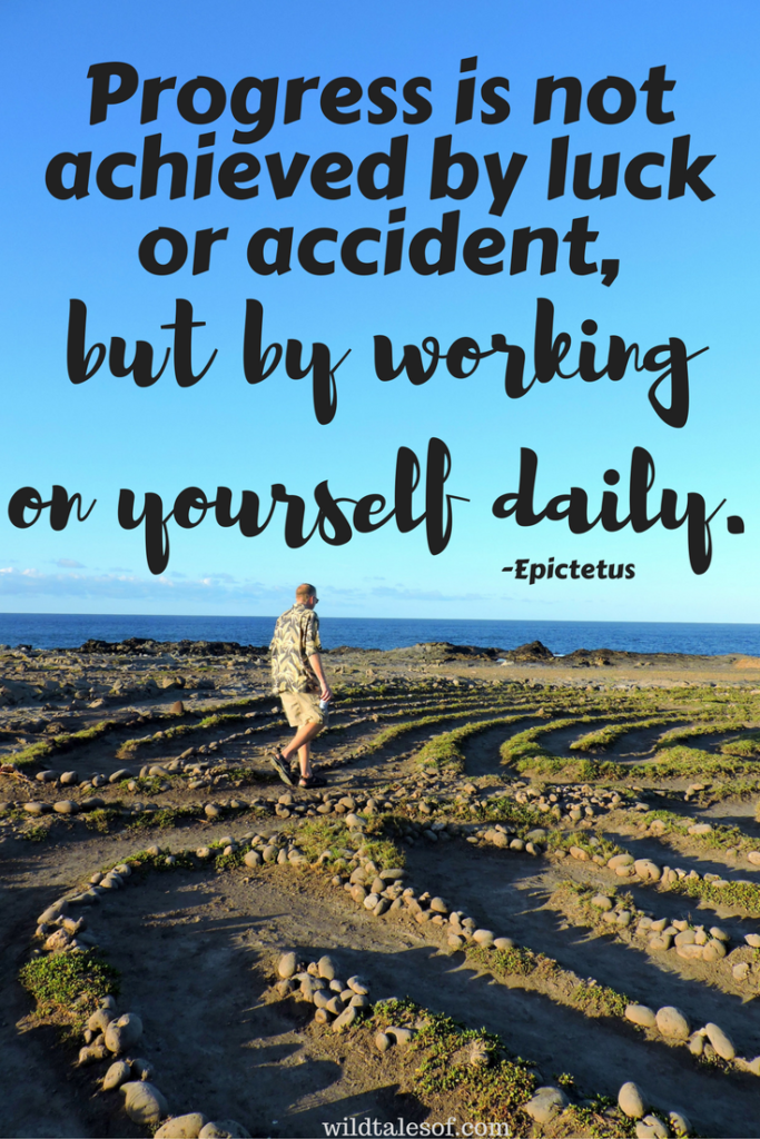 Progress is not achieved by luck or accident, but by working on yourself daily. | WildTalesof.com