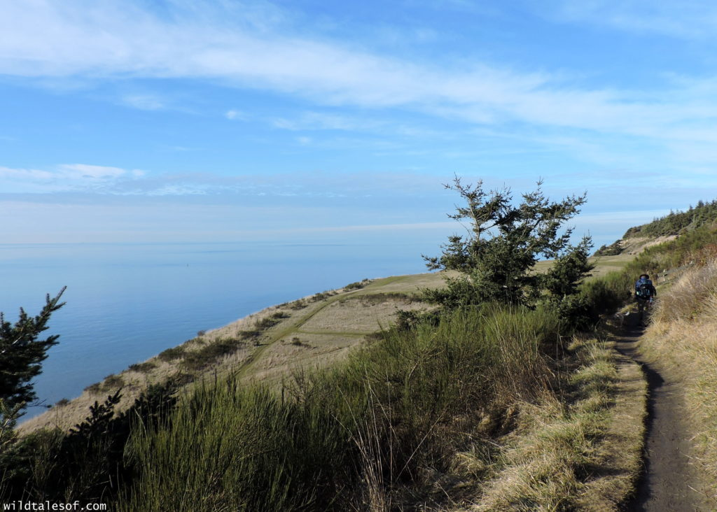 Fort Ebey State Park: Whidbey Island, Washington | WildTalesof.com