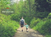 Snohomish County, Washington: Travel and Adventure Guide for Families | WildTalesof.com