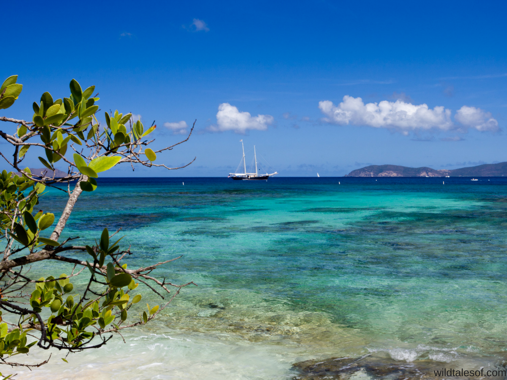 St. John, U.S. Virgin Islands   14 Family Travel Destination Ideas: Where the Experts are Vacationing in 2017   WildTalesof.com