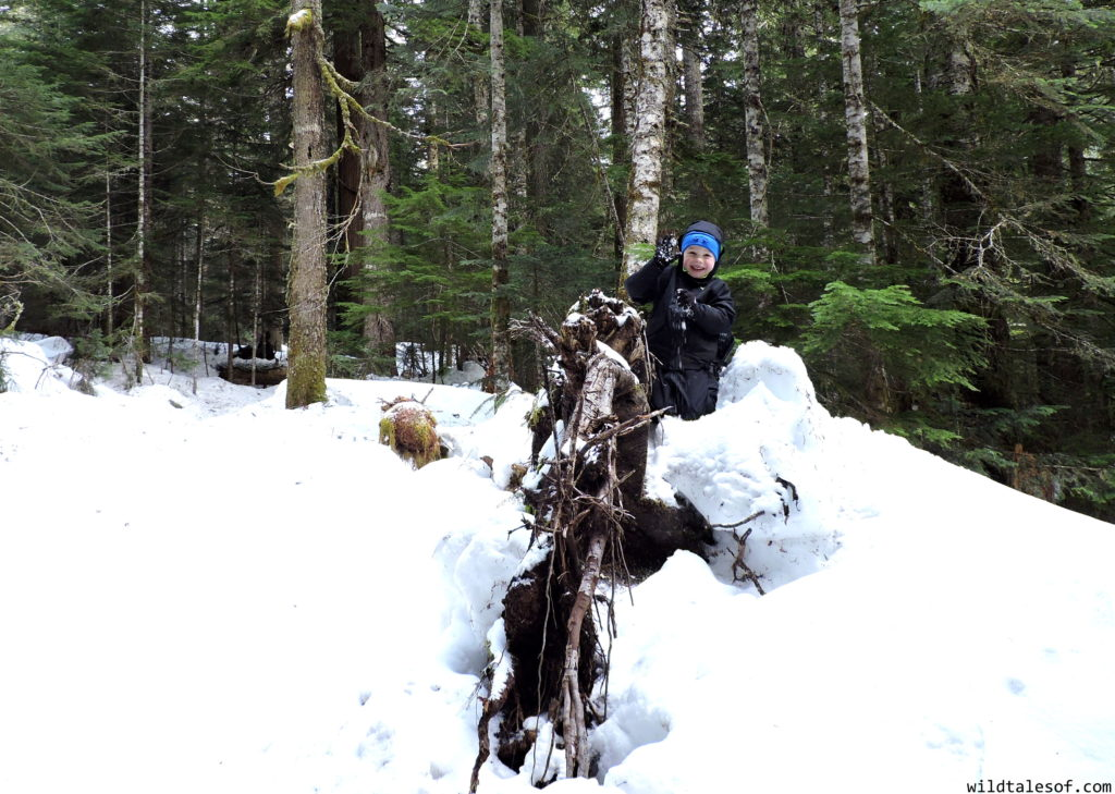 First Family Snowshoe: Mount Rainier National Park | WildTalesof.com