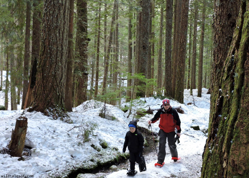 Stonz Wear: Cold Weather Outdoor Gear for Kids | WildTalesof.com