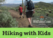 Hiking with Kids: Cave Creek Regional Park near Phoenix, AZ | WildTalesof.com