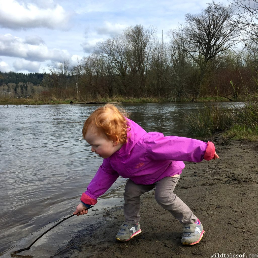 Lake Sammamish State Park With Kids And The Curious Kids