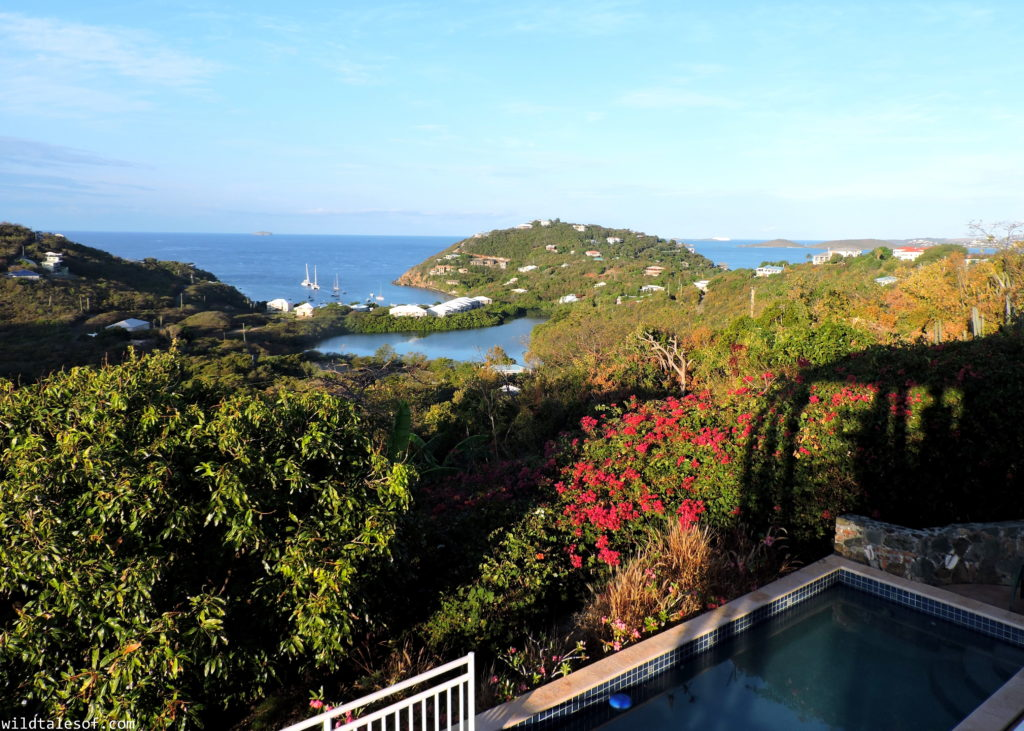 St. John, U.S. Virgin Islands with Kids: 7-day Itinerary