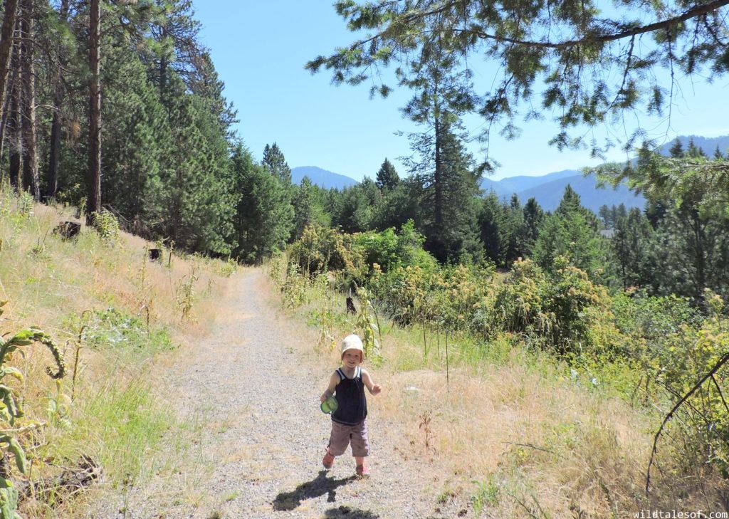 Family Travel Guide to North Idaho | WildTalesof.com