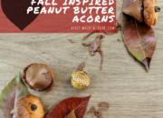 Fall Inspired Peanut Butter Acorns | WildTalesof.com