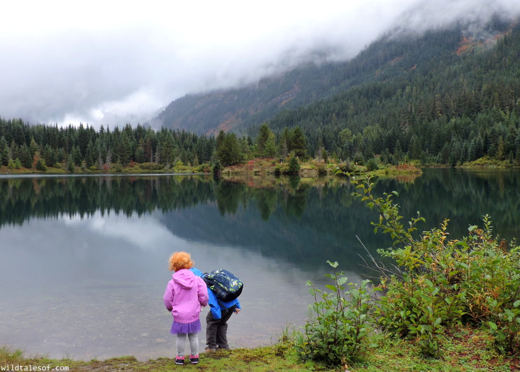 Fall Visit to Gold Creek Pond (Snoqualmie Pass, WA) with Kids | WildTalesof.com